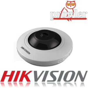 Hikvision Fisheye Cameras